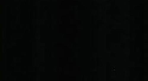 Black Granite Black Is Beautiful Litosonline
